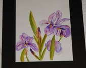 Irises In My Garden Original Watercolor Painting
