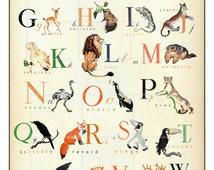 French Alphabet  - Wonderful Animal  Alphabet Print - 11 x 17 inch - l'alphabet en Francais
