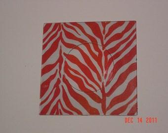 Funky Fun Zebra