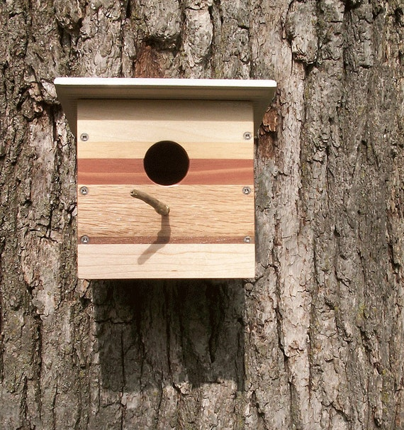Modern Reclaimed Wood Birdhouse - Nest Box - One-of-a-kind - 6 Species of Wood