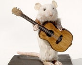 Harper - Guitarist Taxidermied Mouse