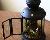 The Summer Cabin Lantern - Living Terrarium and Miniature Sculpture