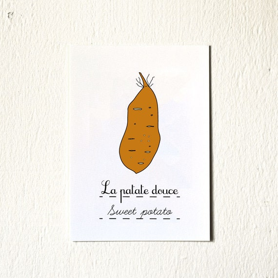 Art for Kitchen Print 'Sweet potato' - Kitchen Illustration - 5 x 7 print (Fruits and Vegetables Food series) orange