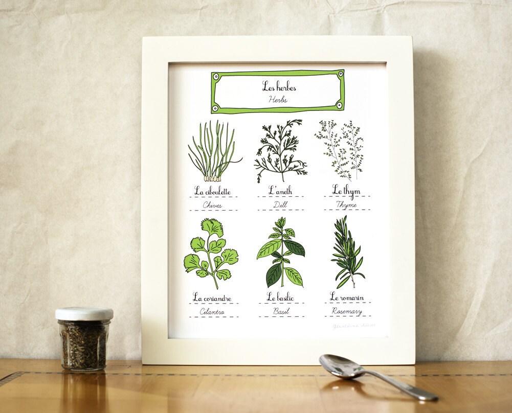 Herbs kitchen art 8x10 art print green home decor eco for Kitchen artwork