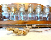 Vintage Spices Glass Jars Set of Six Apothecary Glass and Wooden Rack Storage Organizer