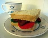 BLT Sandwich Catnip Toy