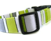 LUCA LEMON Collar - Available in All Sizes