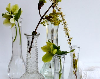 Set of 5 clear glass vases to show your spring buds