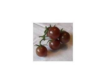 15 Blackest Cherry Tomato Seeds-1201