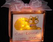 Cat Lover Glass Block Light