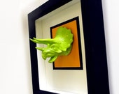 3d neon LIME GREEN TRICERATOPS animal dinosaur trophy art framed mount for your wall