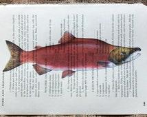 Salmon Art Print on Random Page of Vintage Cookbook