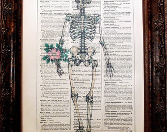 A Page in Time Design Human Skeleton with Flowers Art Print from 1894 on Encyclopedic Dictionary Book Page from 1896