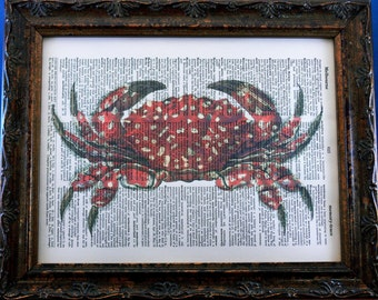 Xanthid Crab Art Print from 1873 on Dictionary Book Page
