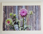 Photo Note Card Purple Thistle Flowers Blank Inside 4 X 6 Free Shipping Made in Montana USA