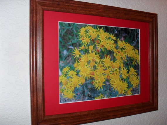 FREE SHIPPING Yellow wildflowers with red matting framed