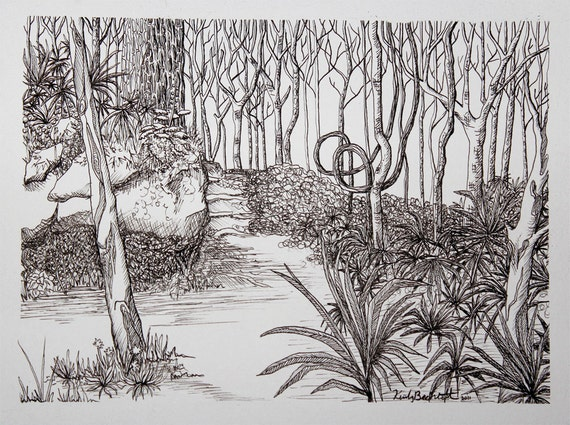 Paths Drawing Drawing Forest Path