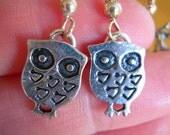 earring with metal bird, birdscage oorring met vogel of vogelkooi of uil
