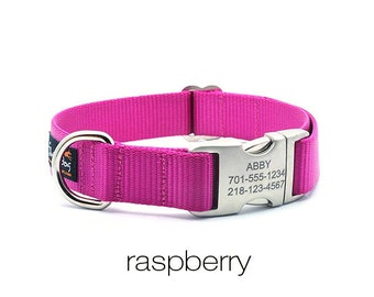 Laser Engraved Personalized Buckle Webbing Dog Collar - Raspberry