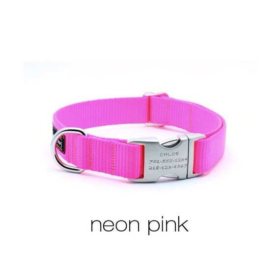 Laser Engraved Personalized Buckle Webbing Dog Collar - Neon Pink