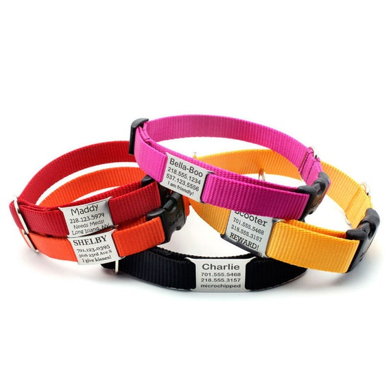 Stealth Personalized Nylon Dog Collar with Laser by LaserPets