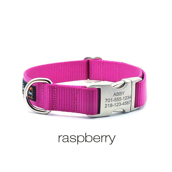 Laser Engraved Personalized Buckle Webbing Dog Collar By