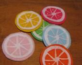 Citrus Coasters - Handmade Felt