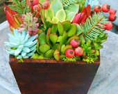 Succulent Holiday Centerpiece, Holiday Succulent Gift, Holiday Gift, Office Gift, Christmas Client Gift, Christmas Hostess Gift, Wooden Box