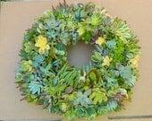 "Succulent Wreath - Round Live Succulent Wreath - 18"" Succulent Wreath for Gift Giving, Home Decor, Wedding Centerpiece"