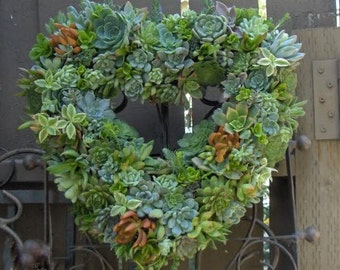 Succulent Live Wreath, Heart Succulent Wreath - Valentines Day Heart Shaped Wedding Succulent Wreath