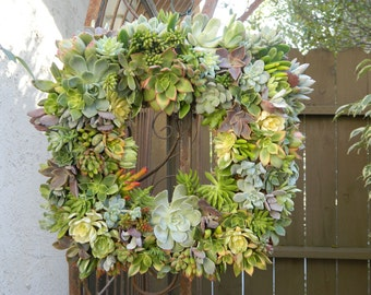 "Succulent Wreath Square Succulent Wreath 15"" Succulent Wreath Fall Wreath Wedding Centerpiece"