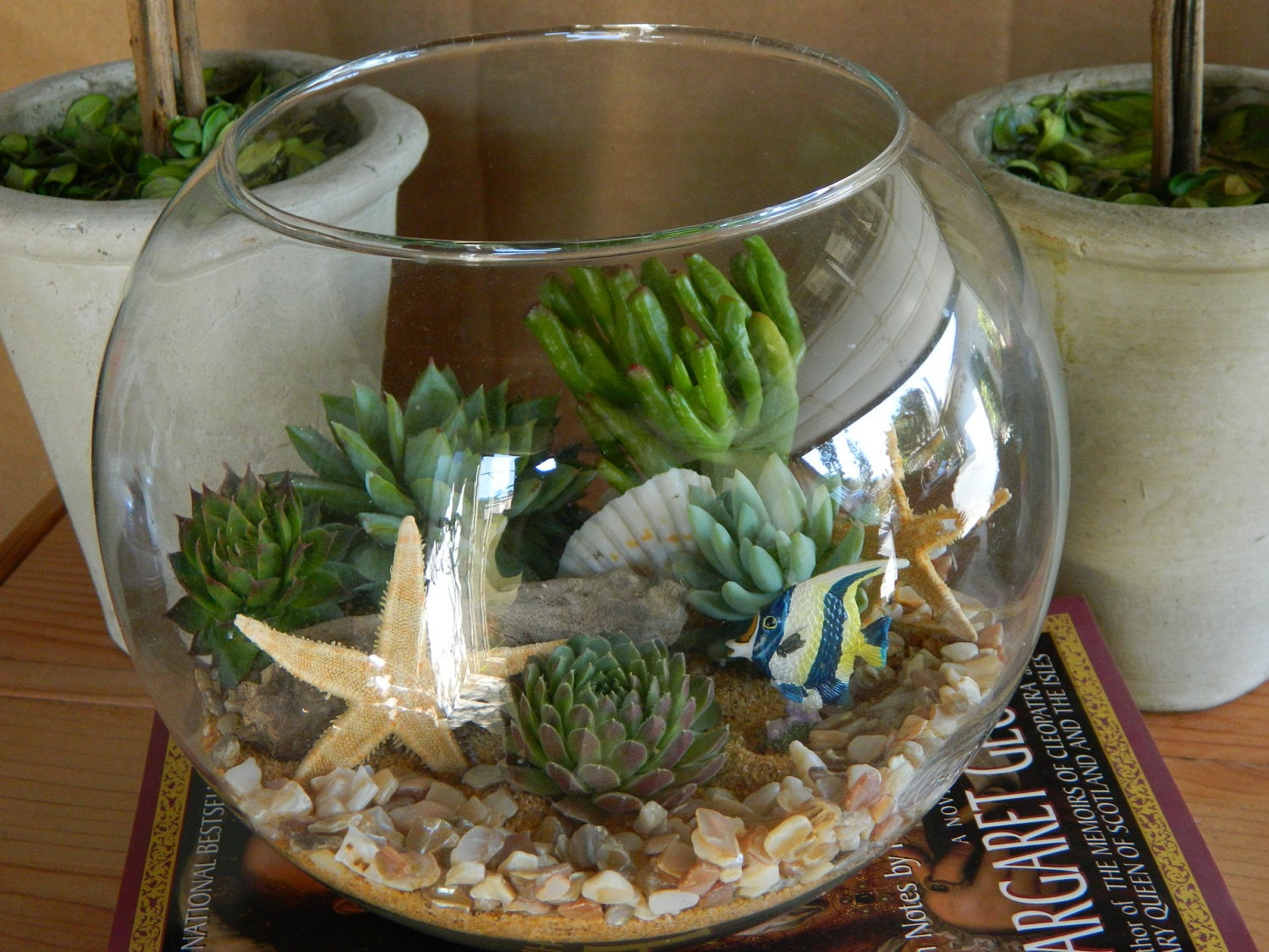 succulent terrarium succulent tabletop wedding centerpiece. Black Bedroom Furniture Sets. Home Design Ideas