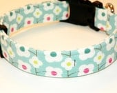 "Floral Springtime Dog Collar -  White Flowers on Turquoise - Springtime Colors  Size LG (15-24"")"