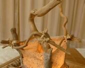 "Table Lamp: ""Econfina"" Natural Driftwood & Handmade Light - OOAK"