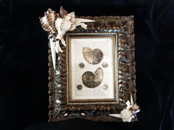 Frame Embellished with Seashells - Gallery Quality