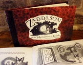 Hardcover - Zaddison & the Mysterious Dark children's book