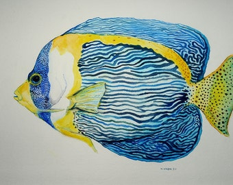 Scribbled Angelfish watercolor