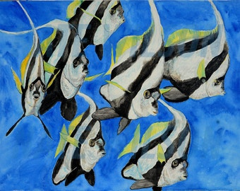 Schooling Bannerfish Watercolor