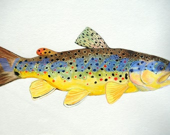 "Brown Trout Watercolor- 12"" x 18"""
