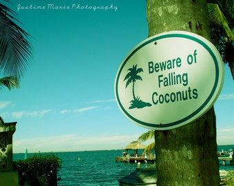 Beware of Falling Coconuts Fine Art Photograph