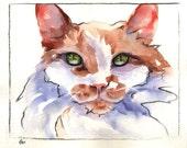 Orange Cat Art - 8 x 10 - Ginger Cat Print - print of watercolor painting -  Alisa Wilcher