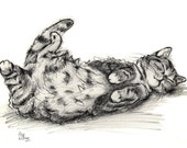Cat Charcoal Print - Cat Print from an Original Drawing - Alisa Wilcher