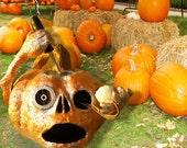 RESERVED:Halloween Pumpkin aka Mr Silverman