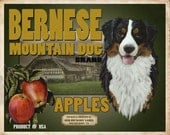 Bernese Mountain Dog Small Wooden Crate