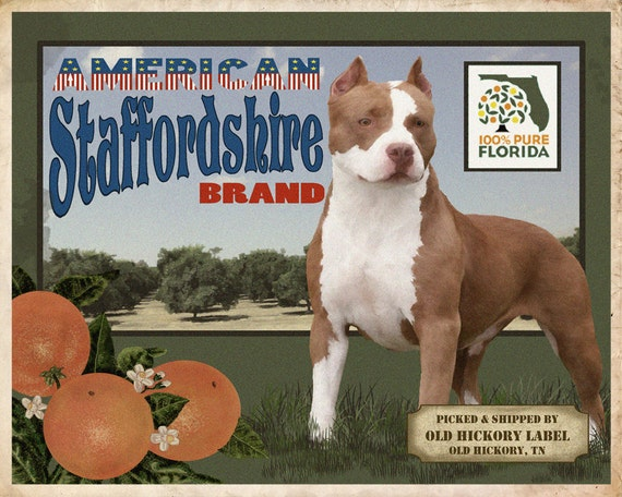 American Staffordshire Terrier Small Wooden Crate