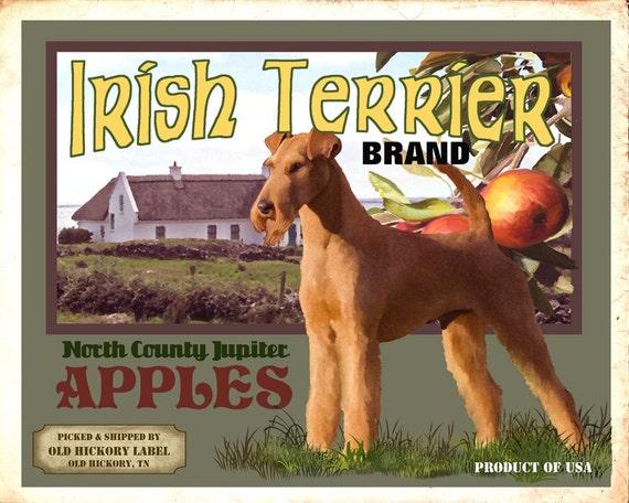 Irish Terrier Small Wooden Crate