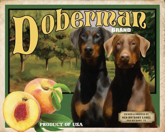 Drop Ear Doberman Pinscher Small Wooden Crate