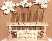 Natural Wood Flower Vase Test Tube Rack