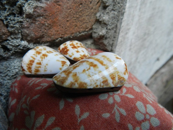 Natural Triangle Sea Shell Beads