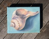 Colorful Pink and Blue Shell - Small Hand-Painted Oil Painting